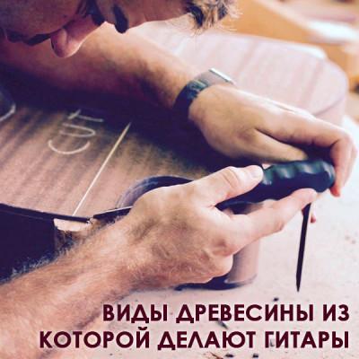 Виды древесины из которой делают гитары